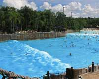 Typhoon Lagoon's Wave Pool!